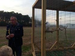 Cape Fear Parrot Sanctuary