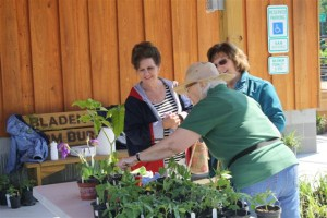 bladenboro farmers market 11