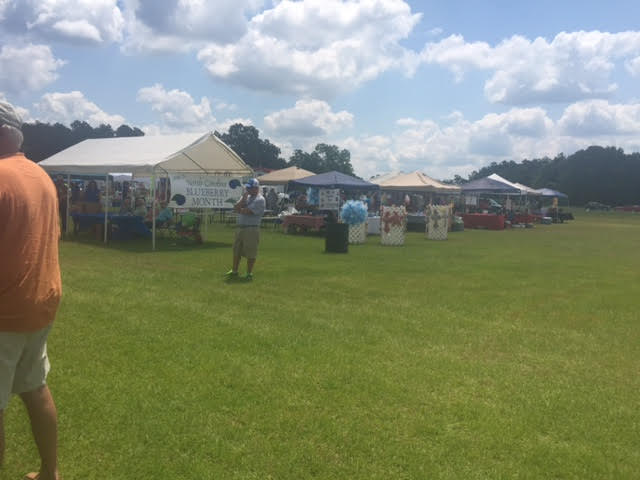 2 Ammon Blueberry Festival