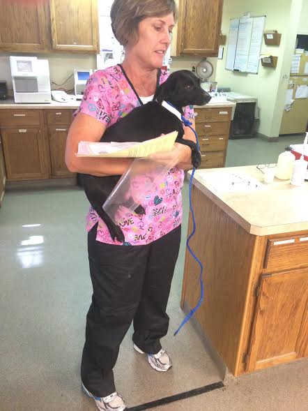Bladen County Spay and Neuter Clinic1