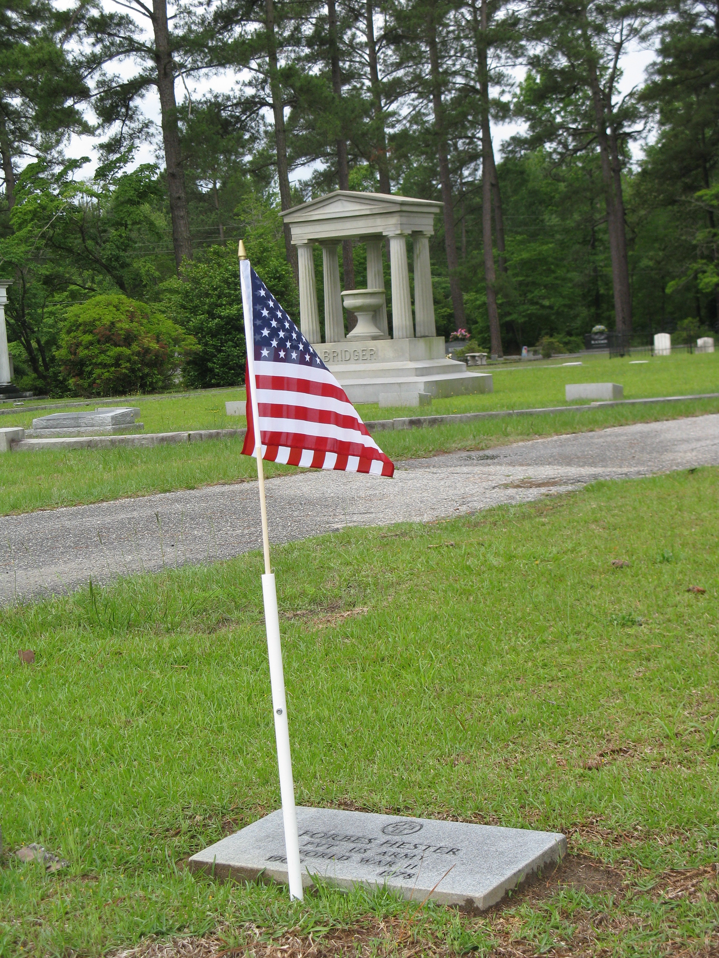 Cemetery Flags6