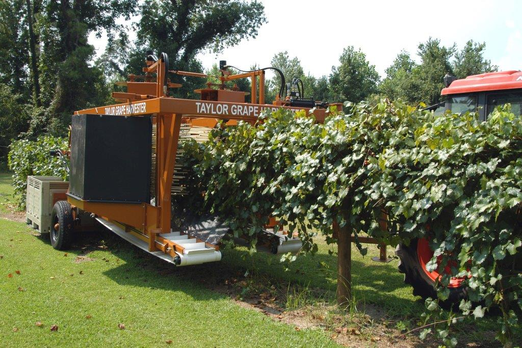 harvester on miller vines (2)