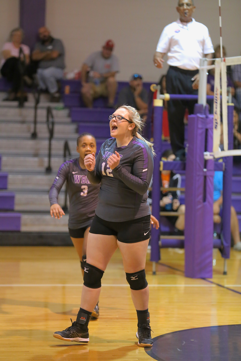 East Columbus v West Bladen volleyball 2017 10