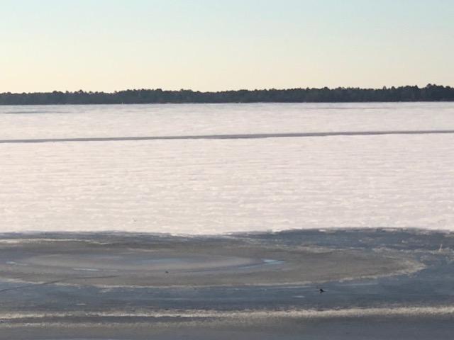 Snow 2018 Bay Tree Lake frozen snow