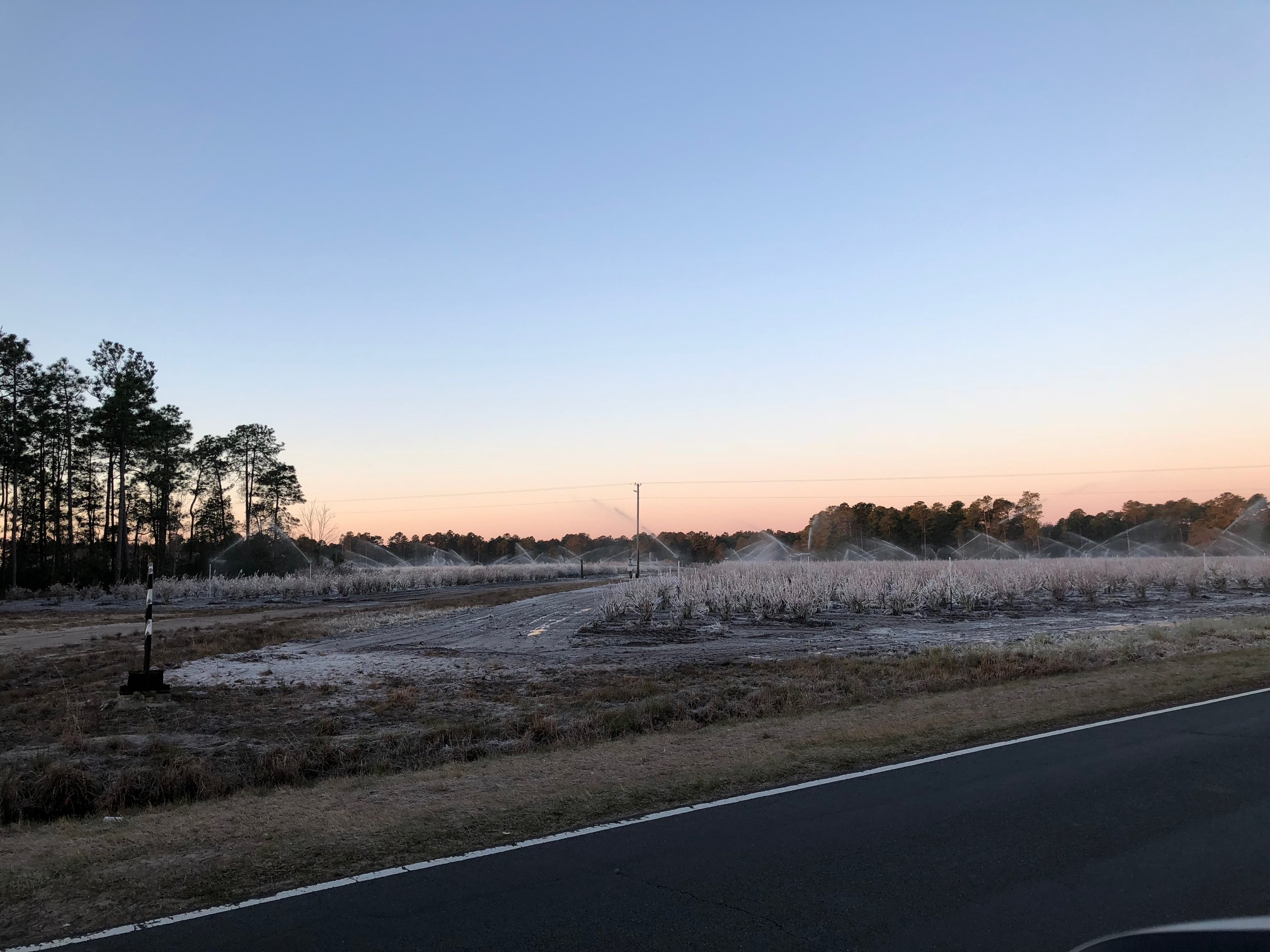 Freezing temperatures have farmers working long hours