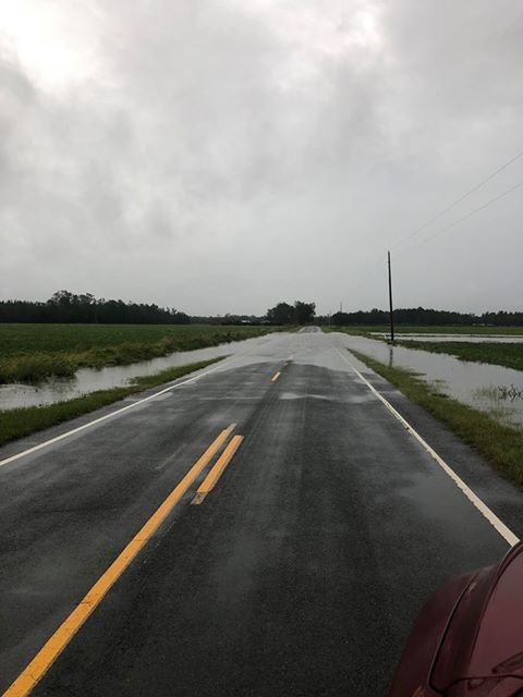 Flooding NC 210 near Garland 1