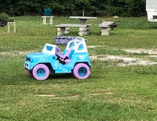 Child_car_in_yard_Blue_Moon_Drive